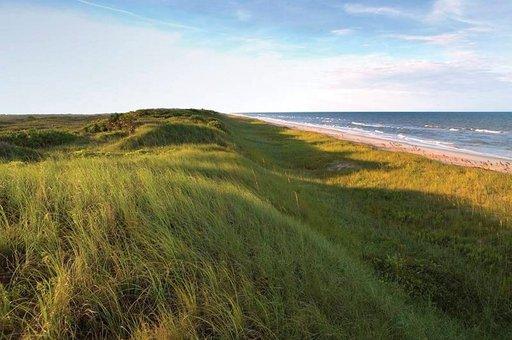 Autiota rantaa ja dyynejä riittää silmänkantamattomiin.