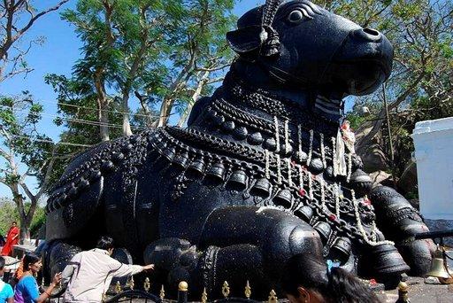 Nandi-härkä on suosittu pyhiinvaelluskohde.
