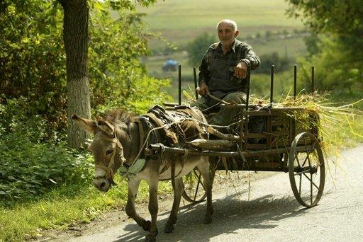 Kun kiire ja kuorma eivät paina, aasillakin matka etenee.