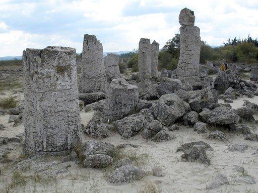 """Kivettynyt """"metsä"""" on peräisin 50 miljoonan vuoden takaa, jolloin alue oli vielä merenpohjaa. Kivimuodostelmat panevat kulkijan mielikuvituksen liikkeelle."""