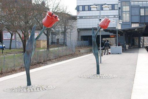 Högdalenin aseman tulppaanit. Kuva: Broberger, CC 4.0