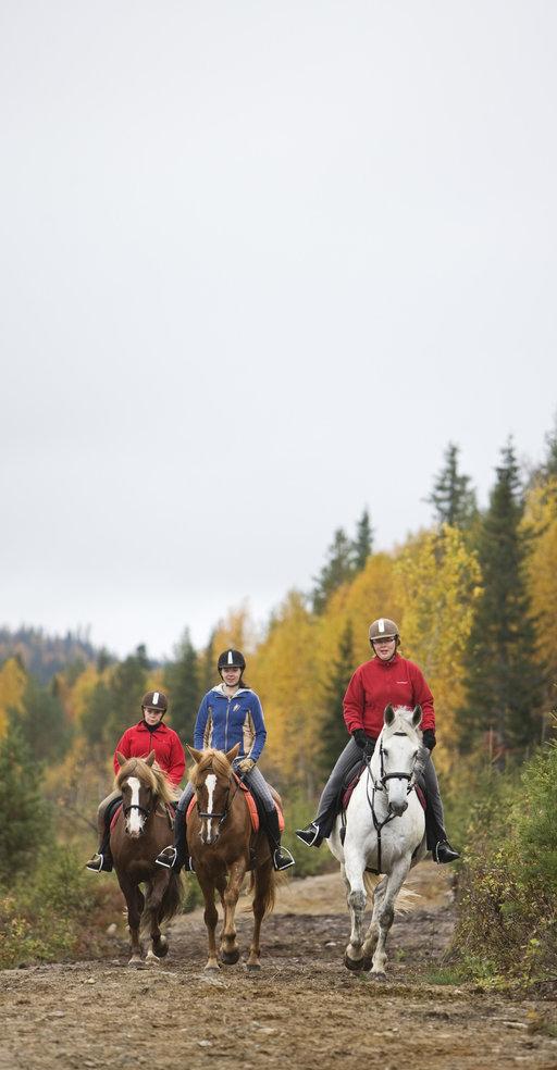Viisi vinkkiä pohjoisen<br /> Suomen ruskamatkalle
