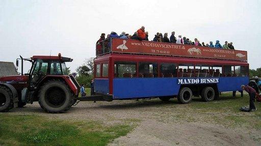 Mandølle matkataan jännittävän traktoribussin kyydissä.