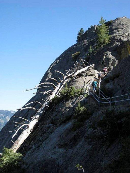 Reippailuhenkiset nauttivat kiipeämisestä Moro Rockin huipulle.