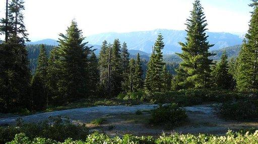 Kansallispuistot ovat rauhallinen keidas keskellä kiireistä Kaliforniaa.