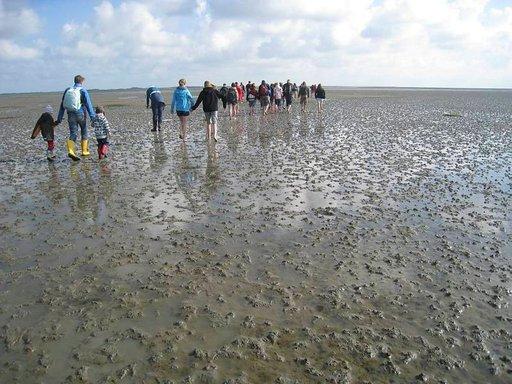 Vattimerivaellus on jännittävä ja unohtumaton elämys.