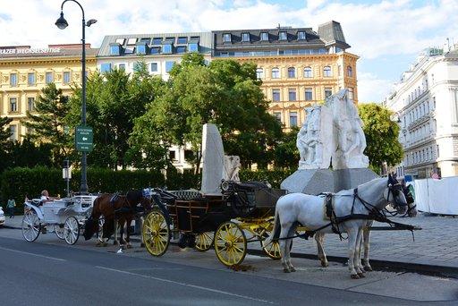 Stephansplatzin liepeiltä lähtevät hevoskärryajelut tarjoavat leppoisan vaihtoehdon ydinkeskustan katseluun.