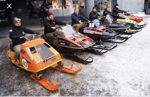 Porot kilpailevat kaduilla<br /> Rovaniemen keskustassa