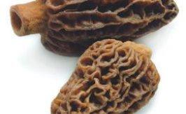 Huhtasieni (3-5cm) 1000g
