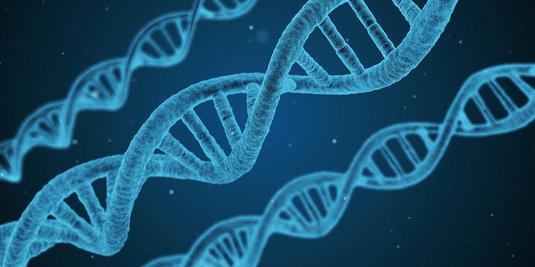 DNA_string.jpg