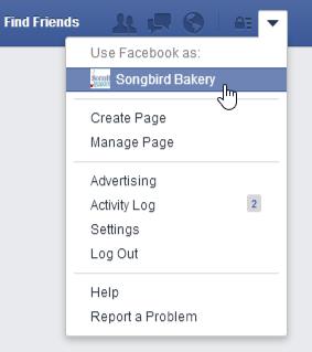 Mistä Löydän Yritykseni Facebook Sivun Tykkääjät?: Kuva #2