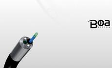 Videoureterorenoskooppi - Boa Vision